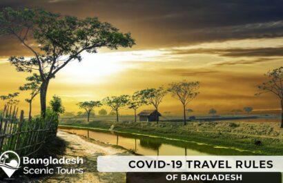 Covid 19 Travel Rules